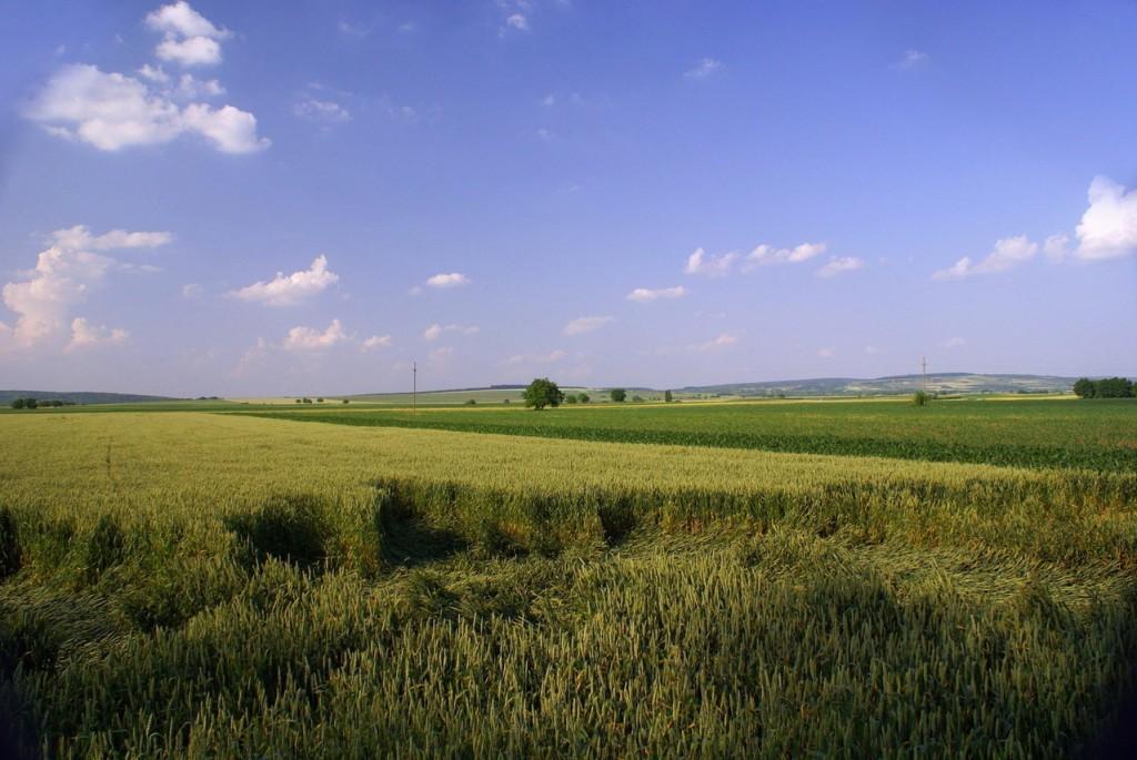 Pozemky v Brně a okolí - kolik stojí a co jejich cenu ovlivňuje?